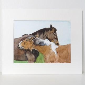 watercolour horse art uk