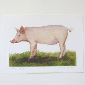 fine art pig print, pig art
