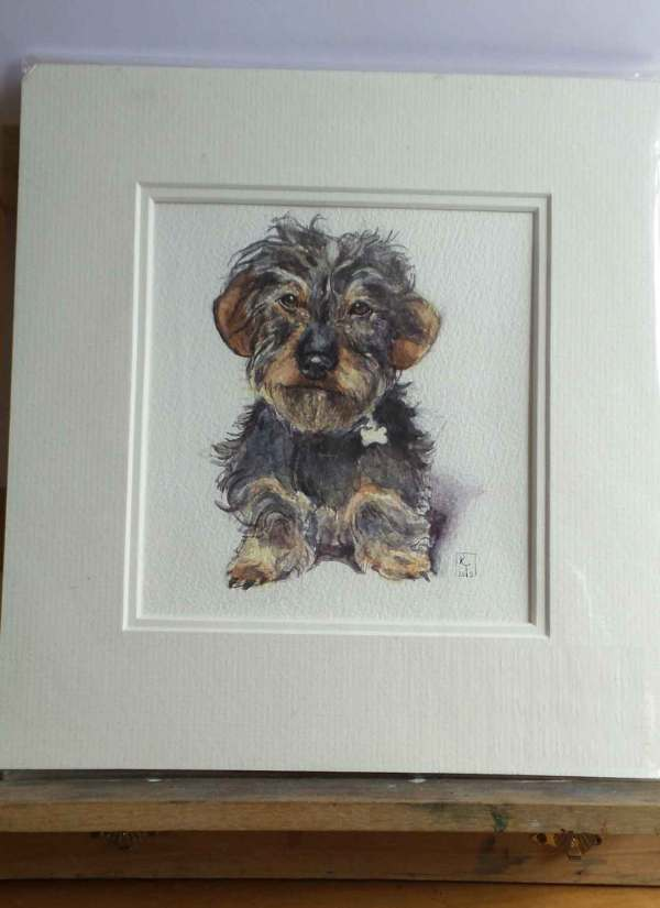 Wirehaired Dachshund watercolour painting