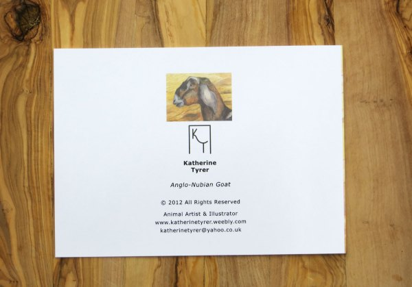 Artists greetings cards, Anglo-Nubian goat greetings card