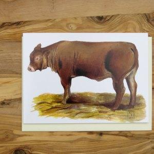 cow greetings card