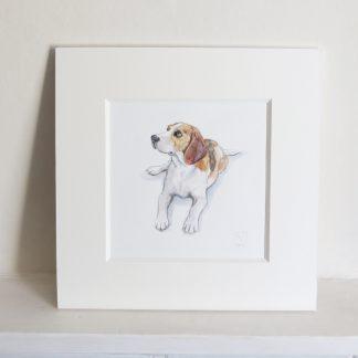 Beagle Watercolour Painting
