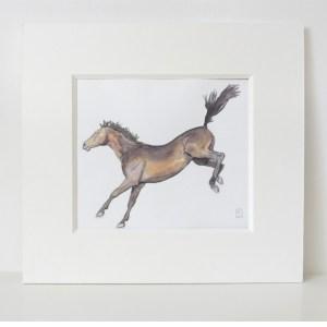 Bucking Thoroughbred horse watercolour