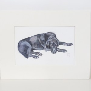 watercolour painting of a black Labrador