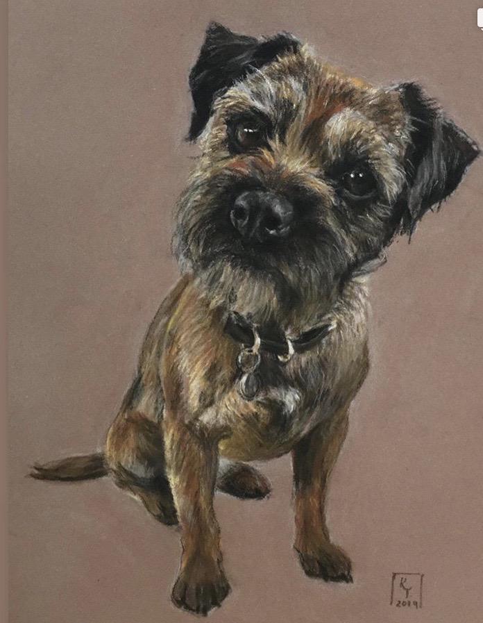 border terrier pastel portrait