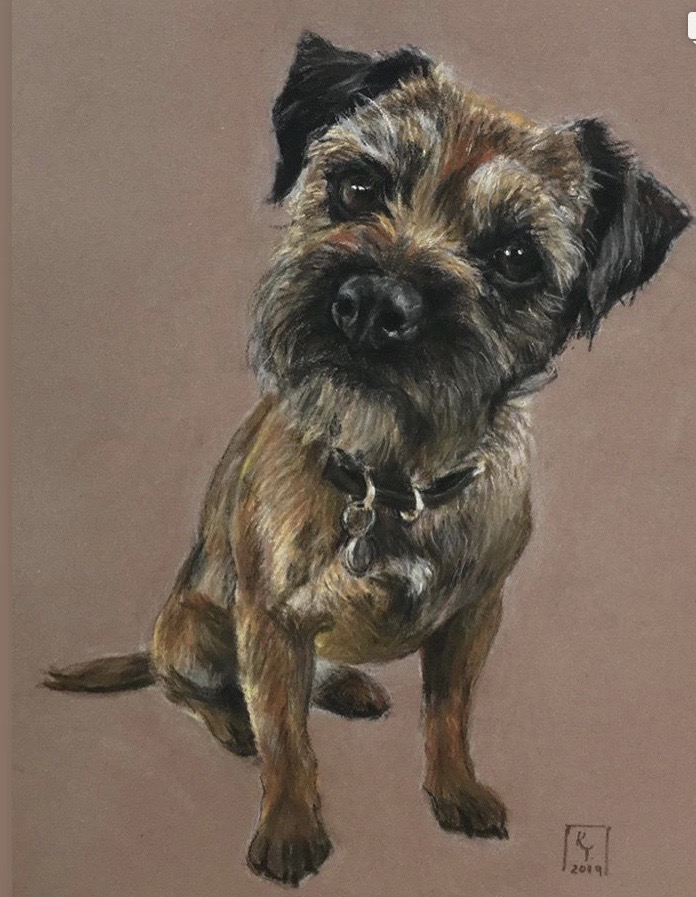 border terrier pastel portrait