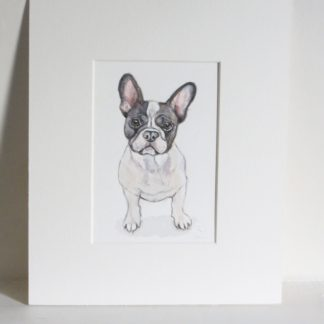Pied French Bulldog Watercolour Painting