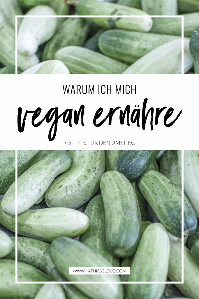 Warum vegan?