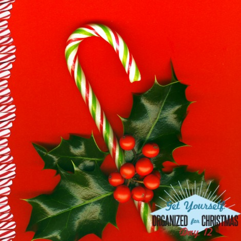 Candy cane with pretty holly leaves and berries on red background, candy cane