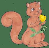 squirrel-holding-flower