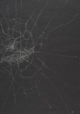 Silberstift auf Papier • 29,7 x 42 cm • 2014