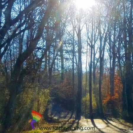 Finding your light through the nevers