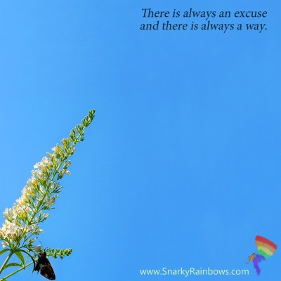 Quote of the Day - excuse or way