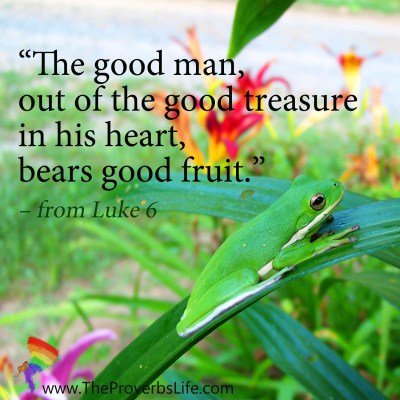 Scripture Focus - from Luke 6