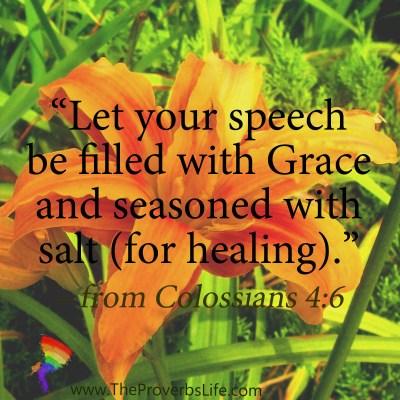 Scripture Focus - Colossians 4:6