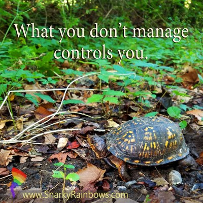 Quote of the Day - manage it