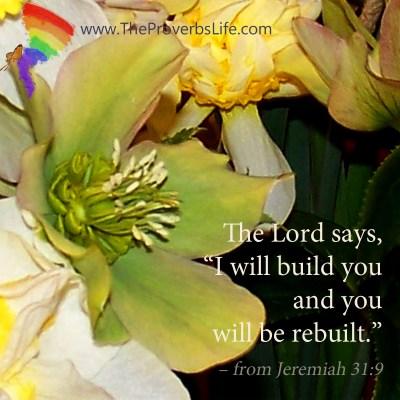 Scripture Focus - Jeremiah 31:9