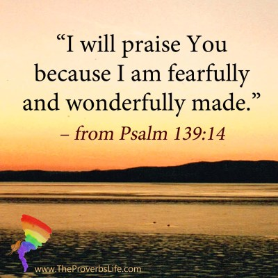 Scripture Focus - Psalm 139:14