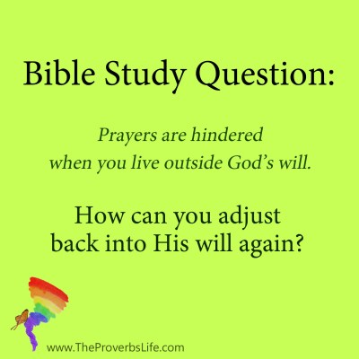 Bible Study Question - back into His will