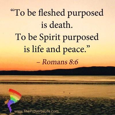 Scripture Focus - romans 8:6