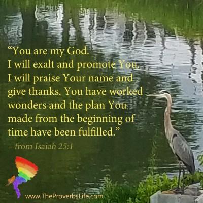 Scripture focus - Isaiah 25:1