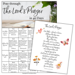 Are you praying the Lord's Prayer as Jesus taught or simply reciting it? Join the 40 day prayer challenge. Learn how to pray the Lord's Prayer deeply by praying it line-by-line. Explore scripture studies for each line. (+ free printable of the Lord's Prayer, plus free 40 day prayer prompts printable)