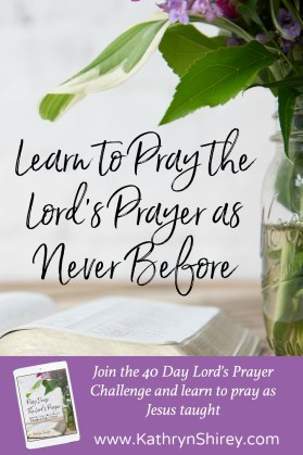 Want to experience the Lord's Prayer in a new way? Want to deeply connect to its words? Join the 40 day Lord's Prayer Challenge and learn to pray the Lord's Prayer as never before. Click to learn more.