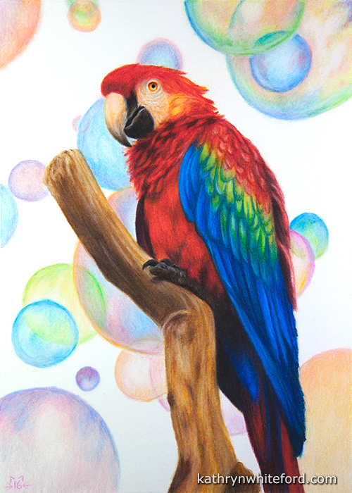 """""""30 Days of Birds, Day 30"""" Coloured pencils on watercolour paper, 5x7 inches"""