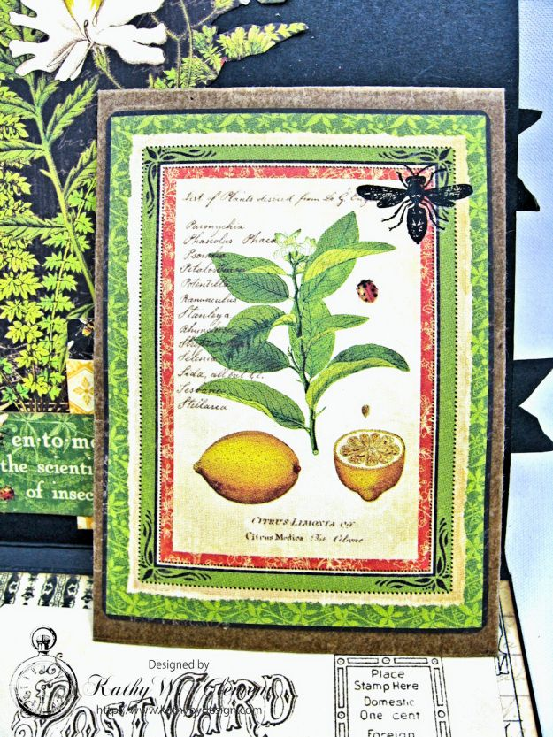 Nature Sketchbook Honeybee Shaker Card by Kathy Clement Photo 5