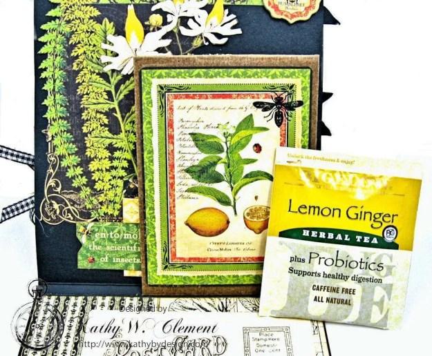 Nature Sketchbook Honeybee Shaker Card by Kathy Clement Photo 6