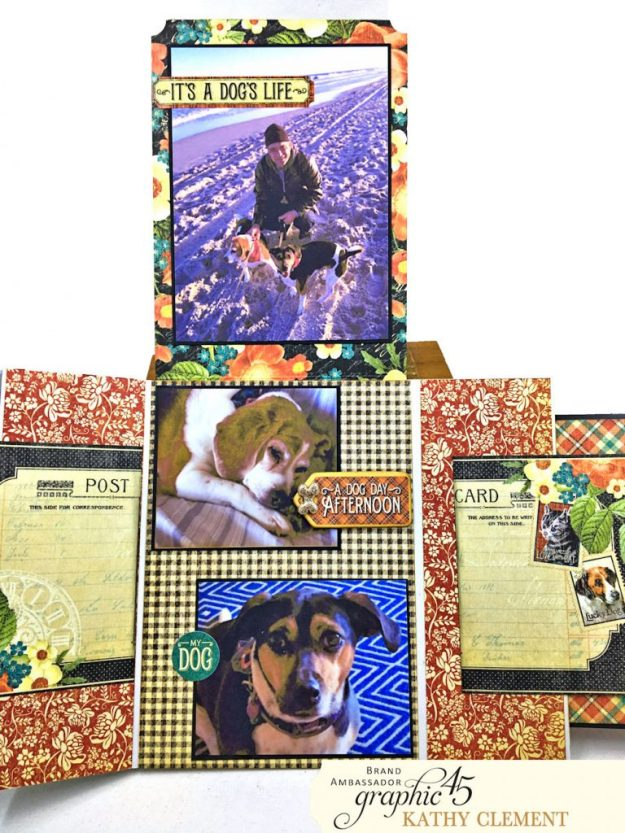 Graphic 45 Raining Cats and Dogs Photo Folio Tutorial by Kathy Clement for Really Reasonable Ribbon Photo 06
