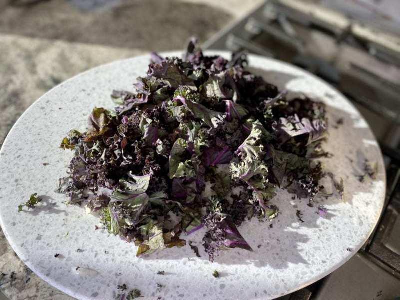 Chickpea Soup Recipe Kale
