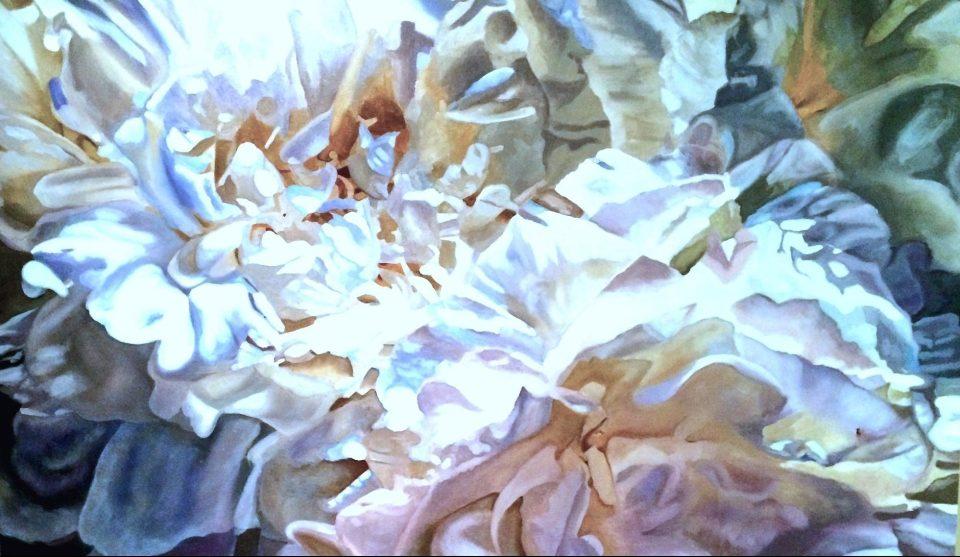 Peonies, Print, Canvas