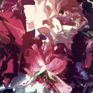 shades-of-purple-roses-red-white-lavender