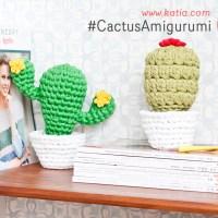 2 supereinfache Amigurumi-Kakteen. Häkle diese tollen Buchstützen für dein Zuhause!