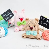Proyekto Amigurumi | Bear and bunny with a special message