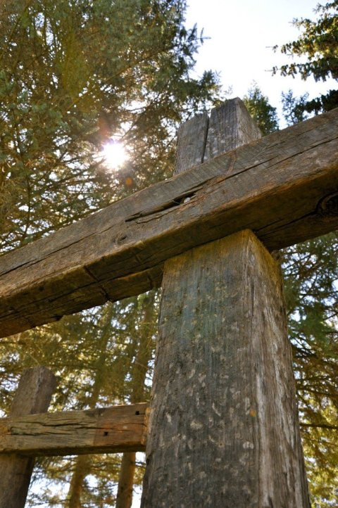 cross with light through trees by Katie M. Reid photography