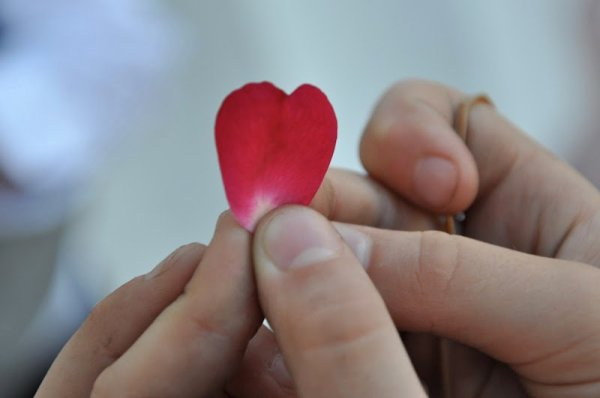 Hands holding up a rose petal heart