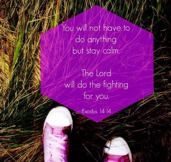 Exodus 14:14 by Molly Dragert