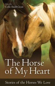 The Horse of My Heart by Callie Smith Grant for Revell Books
