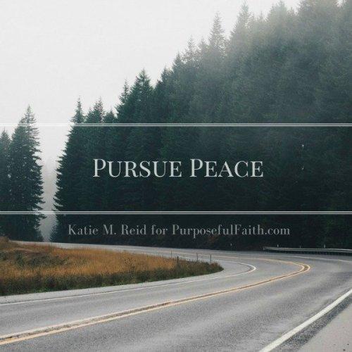 Pursue peace image for Purposeful Faith