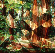 redwoods-katiepm
