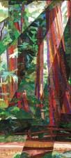 Humboldt-Redwoods-Katiepm