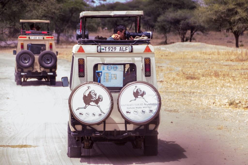 Luxury Tanzaia safaris
