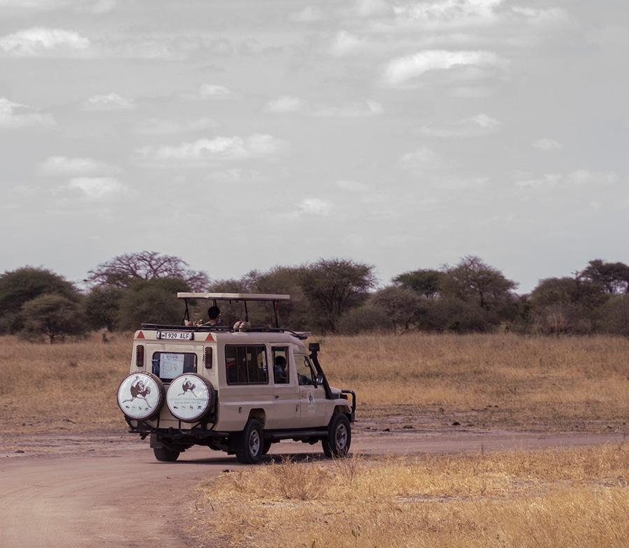 Katikati Safaris Vehicles