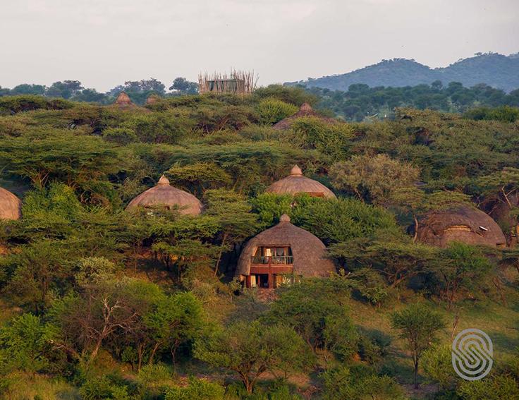 Serena Safari in Tanzania