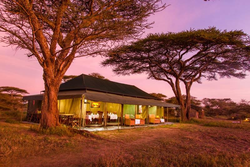 crossing Safari_Dining_Tent_In_Mara