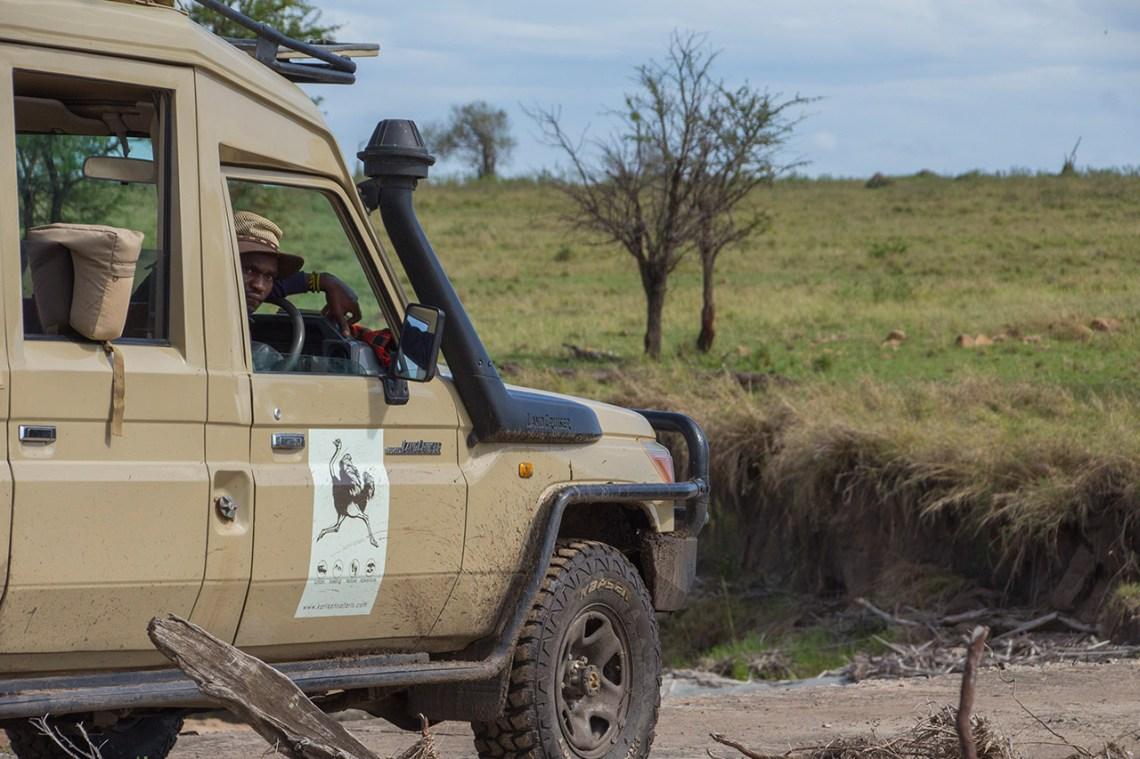 Tailor made safaris in Tanzania