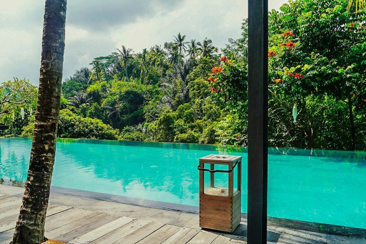 Image of small wooden table on decking next to infinity pool with jungle background