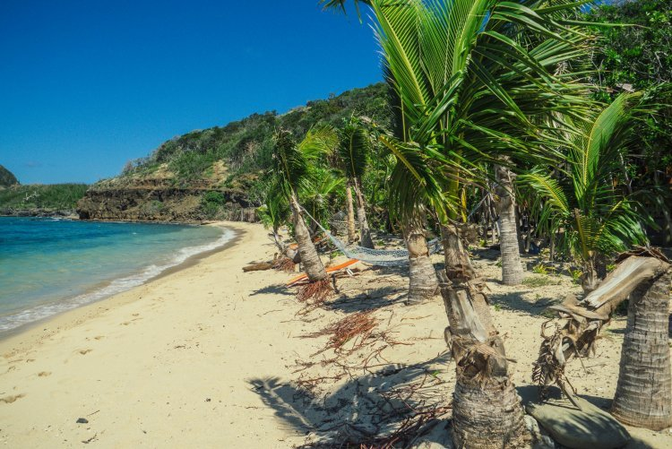 Image of a sandy beach with green palm trees and blue sea and sky in Fiji